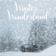 Pinecastle Records, bluegrass, acoustic music, Christmas music, Syntax Creative - image