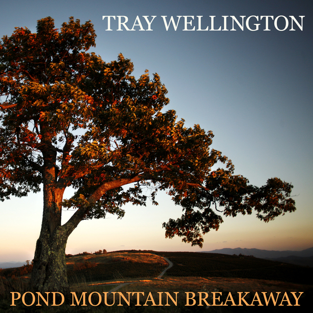 Tray Wellington, bluegrass, acoustic, banjo, Mountain Home Music Company, Syntax Creative - image